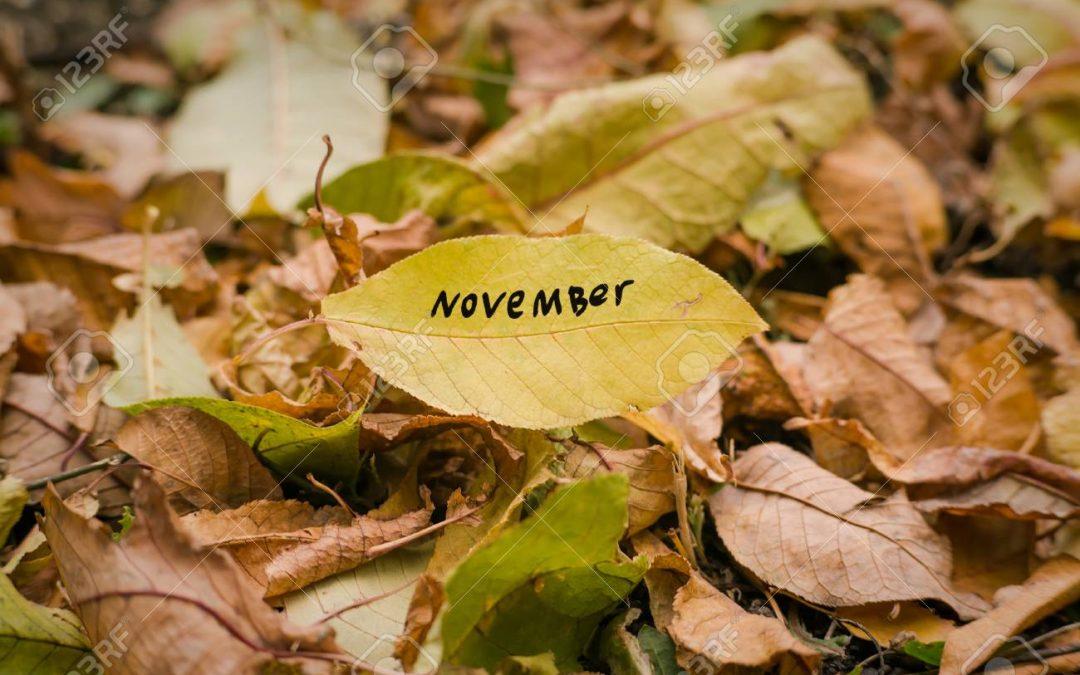 Agenda Turístico/Cultural del 15 al 30 Noviembre